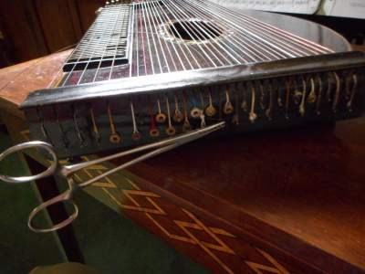 hemostat on zither pin.jpg
